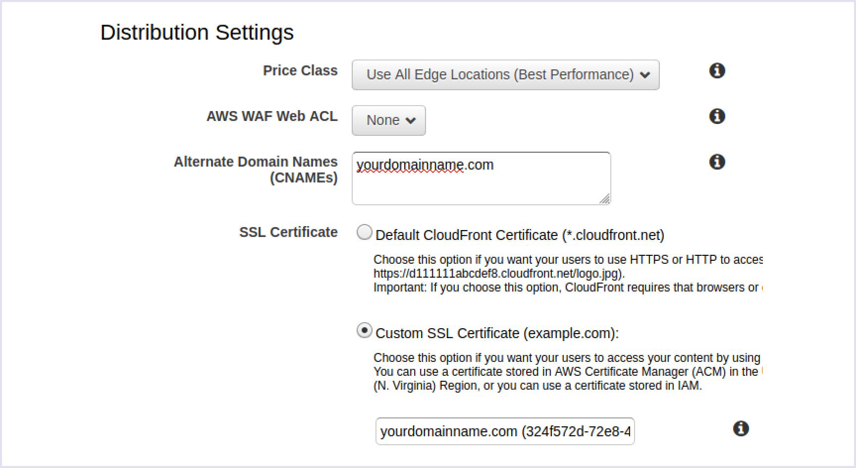 Choosing the Custom SSL certificate