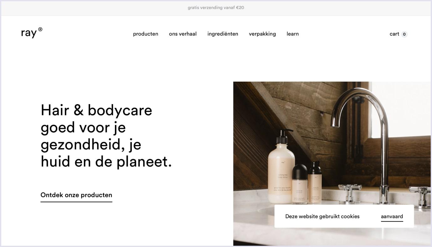 Minimalistic web design by Ray
