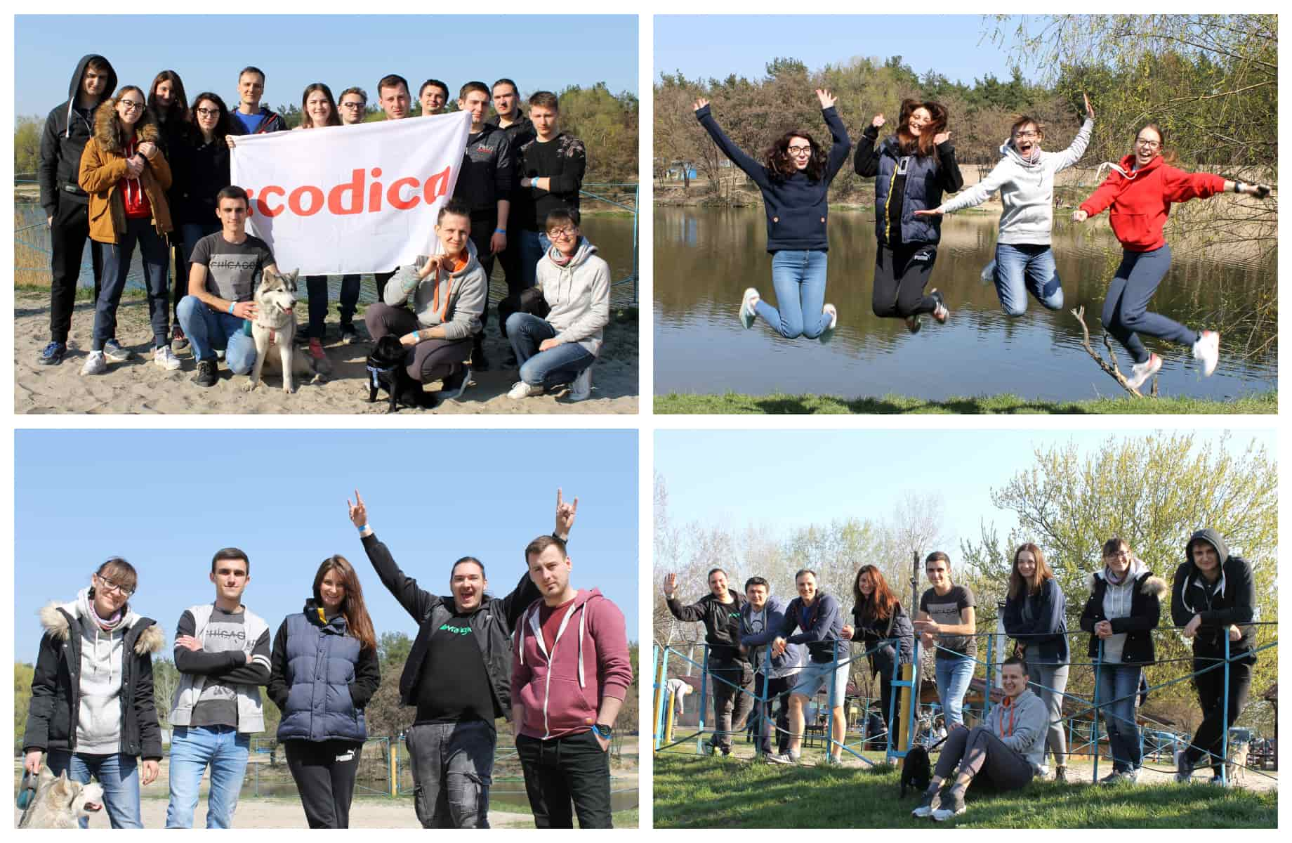Codica team had a relaxing picnic by the river